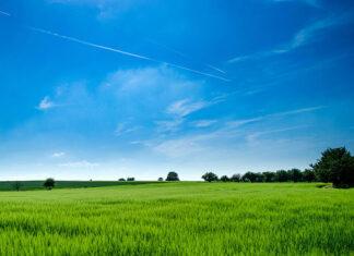 Agroturystyka – pomysł na biznes na wsi